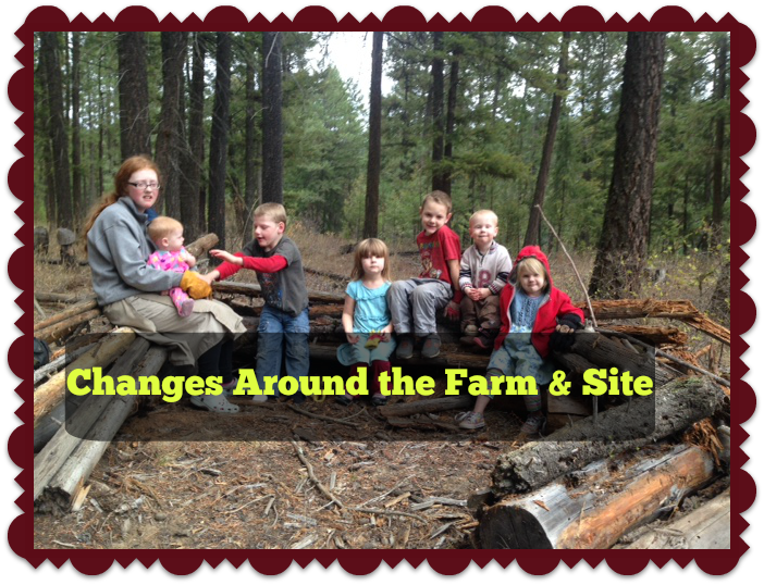 Changes Around the Farm & Site