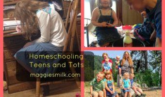 Homeschooling Teens and Tots