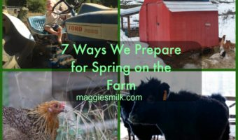 7 Ways We Prepare for Spring on the Farm