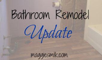 Bathroom Remodel: Update