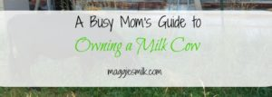 Blogging reflections 2016: Busy Mom's Guide to Owning a Milk cow