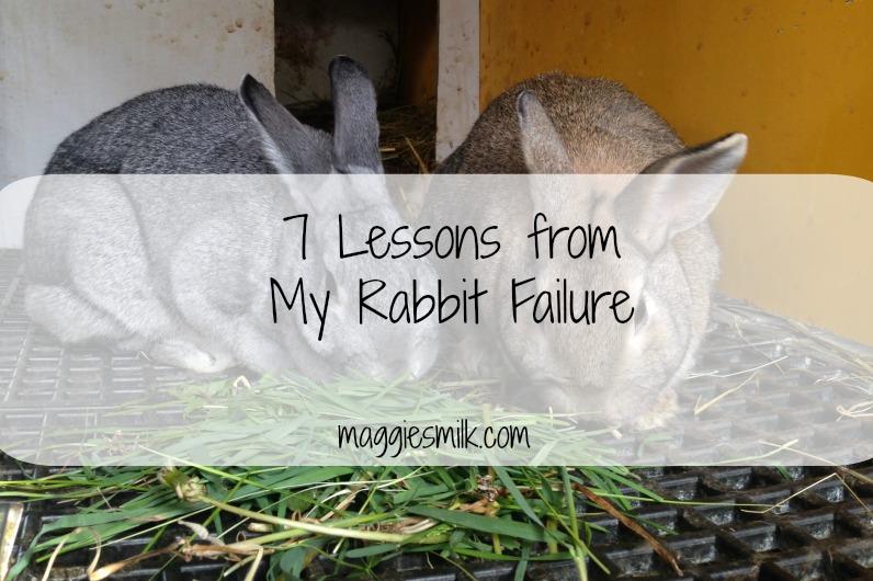 rabbit failure
