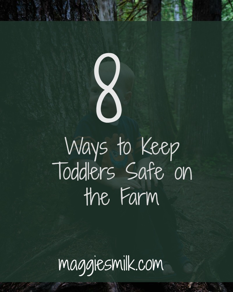 Here are 8 tips I've learned for keeping toddlers safe on the farm!