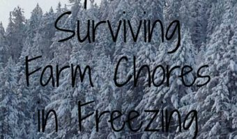 5 Tips for Surviving Farm Chores in Freezing Weather