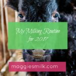 My Milking Routine for 2017 & the Farm's New Addition