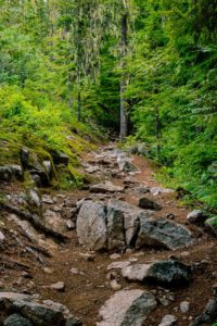 Part of the trail to view Granite Falls.