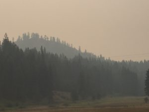 Smoke from the burning west reduces visiblity and makes it hard to breathe.