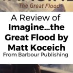 My Review of the Book Imagine…The Great Flood