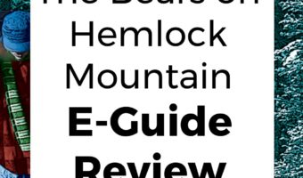The Bears on Hemlock Mountain E-Guide Review