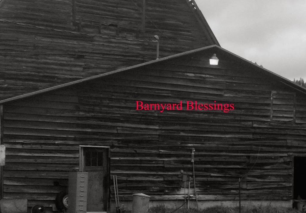 Barnyard Blessings