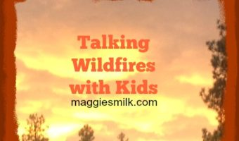 wildfires with kids