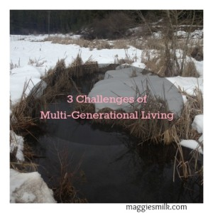 3 Challenges of multi-generational living