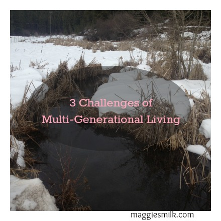 3 Challenges of Multi-Generational Living - Maggie's Milk