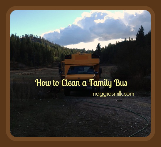 How to Clean a Family Bus