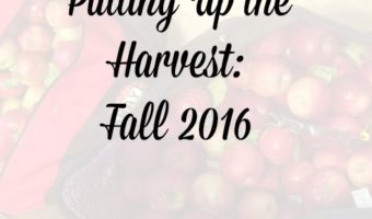 Putting up the Harvest: Fall 2016