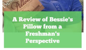 A Review of Bessie's Pillow from a Freshman's Perspective