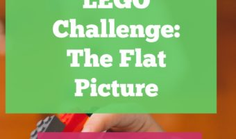 LEGOs are an amazing STEM toy. I occassionally give my kids a LEGO challenge, where they have to build around a set theme or topic. Here's the details and benefits of our flat picture challenge.