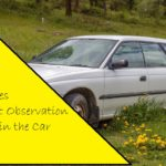 5 Games to Boost Observation Skills in the Car