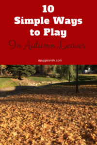 10 ways to play in autumn leaves