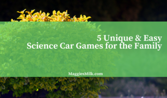 5 Unique & Easy Science Car Games for the Family