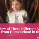 A Review of Three Different Á La Carte Products from Home School in the Woods