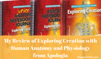 My Review of Exploring Creation with Human Anatomy and Physiology from Apologia