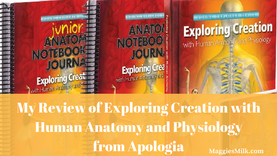 My Review of Exploring Creation with Human Anatomy and Physiology ...