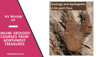 My Review of Online Geology Courses from Northwest Treasure