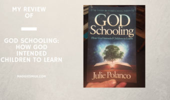 My Review of God Schooling: How God Intended Children to Learn